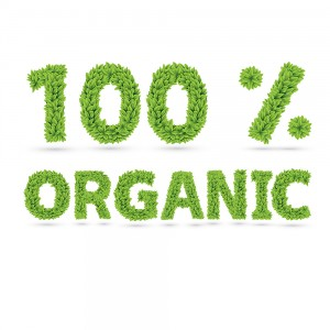 Organic-Carpet-Cleaning-Kingwood-Texas